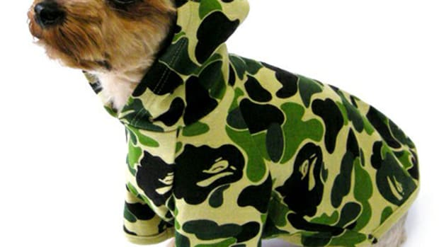dog-store-bathing-ape-abc-camo-hoodie-01