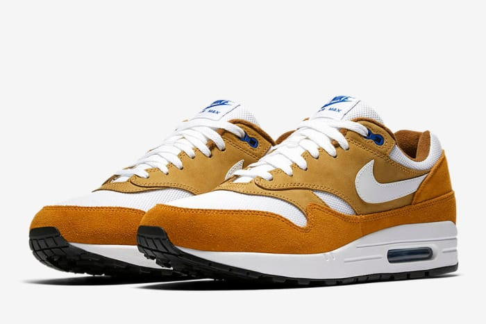 "Nike Air Max 1 ""Dark Curry"""