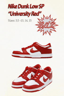 nike-dunk-low-sp-team-tones-collection-2020-2