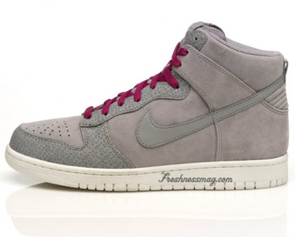 Nike Sportswear - Dunk Safari Pack - 3