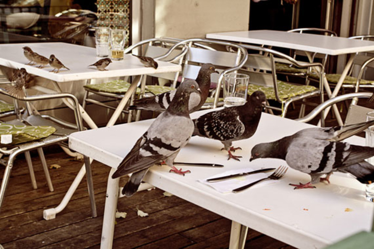 universal-works-c-store-mod-parka-capsule-collection-lookbook-18
