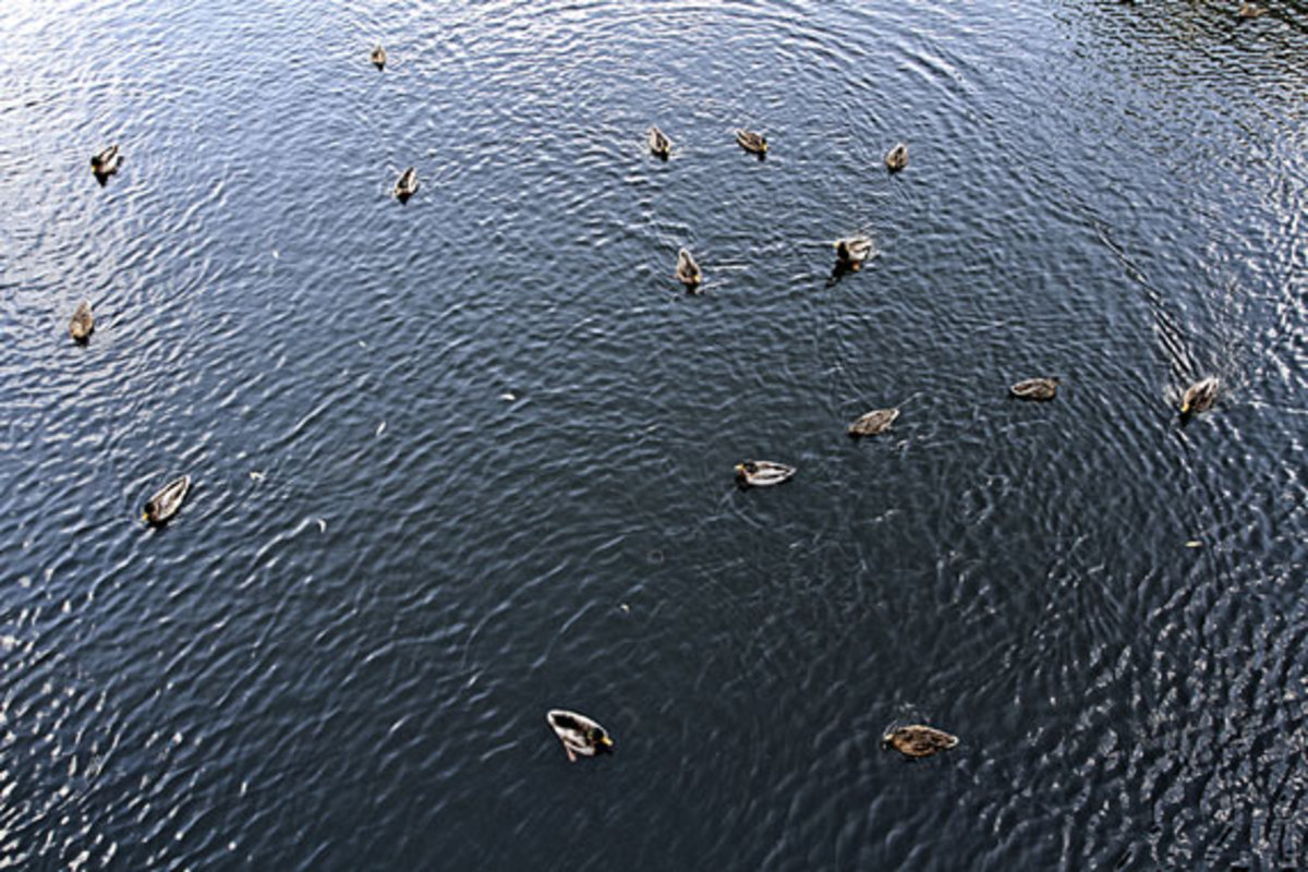 universal-works-c-store-mod-parka-capsule-collection-lookbook-14