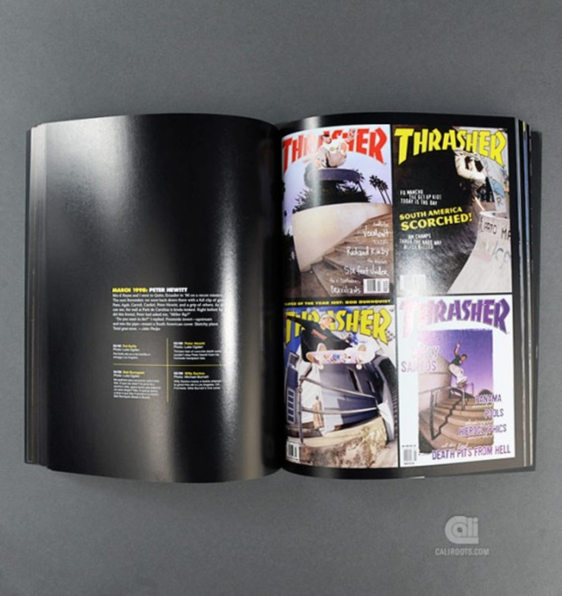 maximum-rad-the-iconic-covers-of-thrasher-magazine-book-by-rizzoli-06