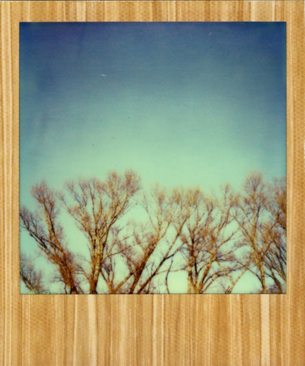 the-impossible-project-px-680-film-american-wood-edition-05