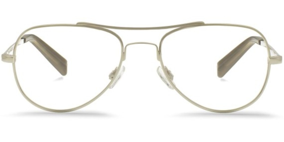 warby-parker-into-the-gloss-aviators-10
