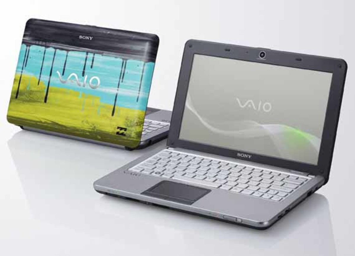 Billabong-sony-VAIO-W-02