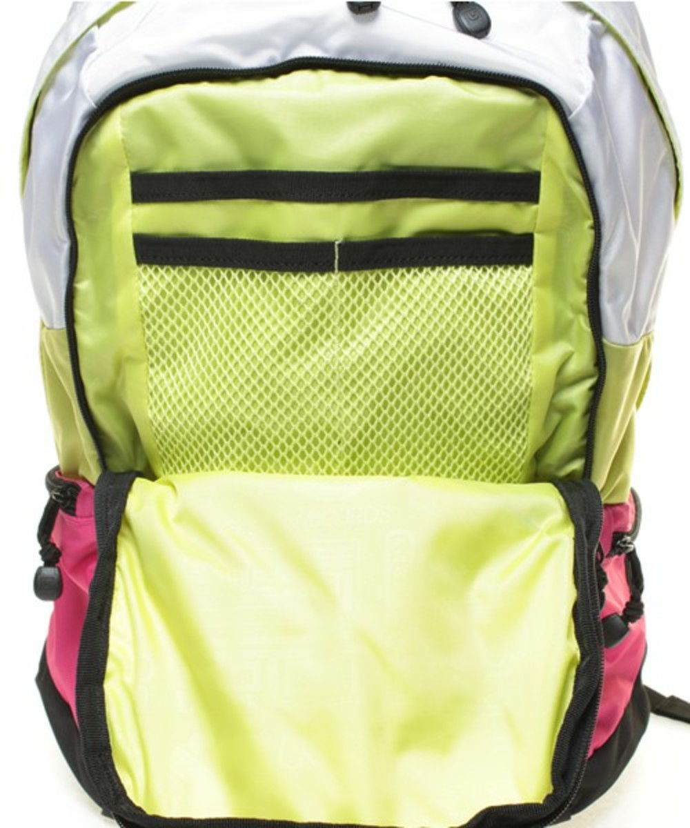 Day Hiker 20L Pink 8