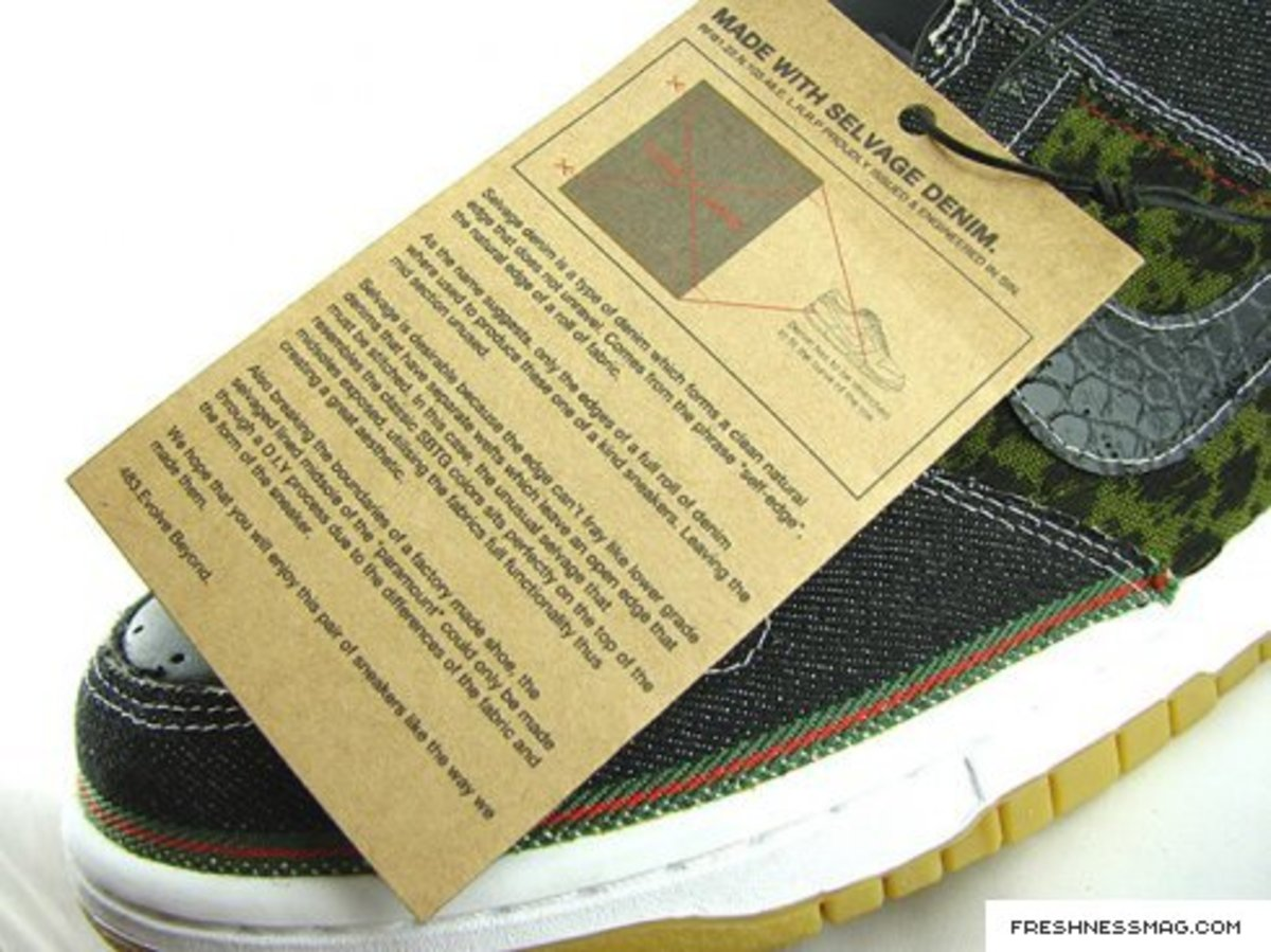 SBTG x Lazy - The Paramount Dunk Low - Update - 4