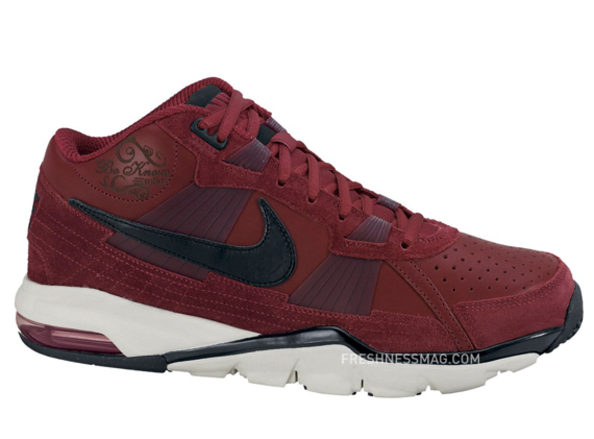nike-trainer-sc-2010-premium-bo-knows-pack-06