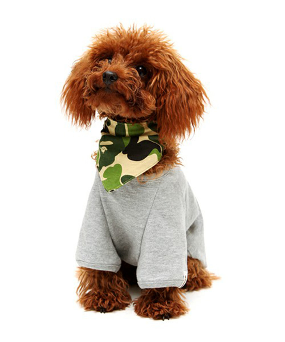 dog-store-bathing-ape-college-tee-01