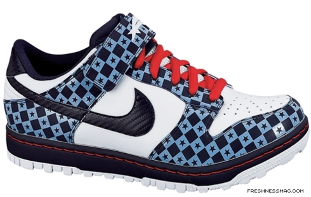 Nike Dunk Gyrizo BMX Shoe - USA