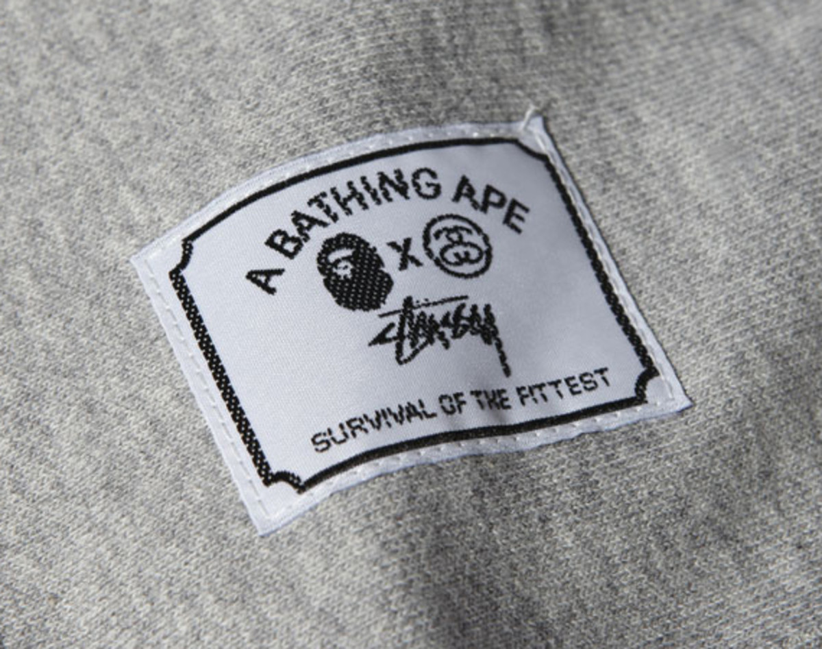 a-bathing-ape-stussy-survival-fittest
