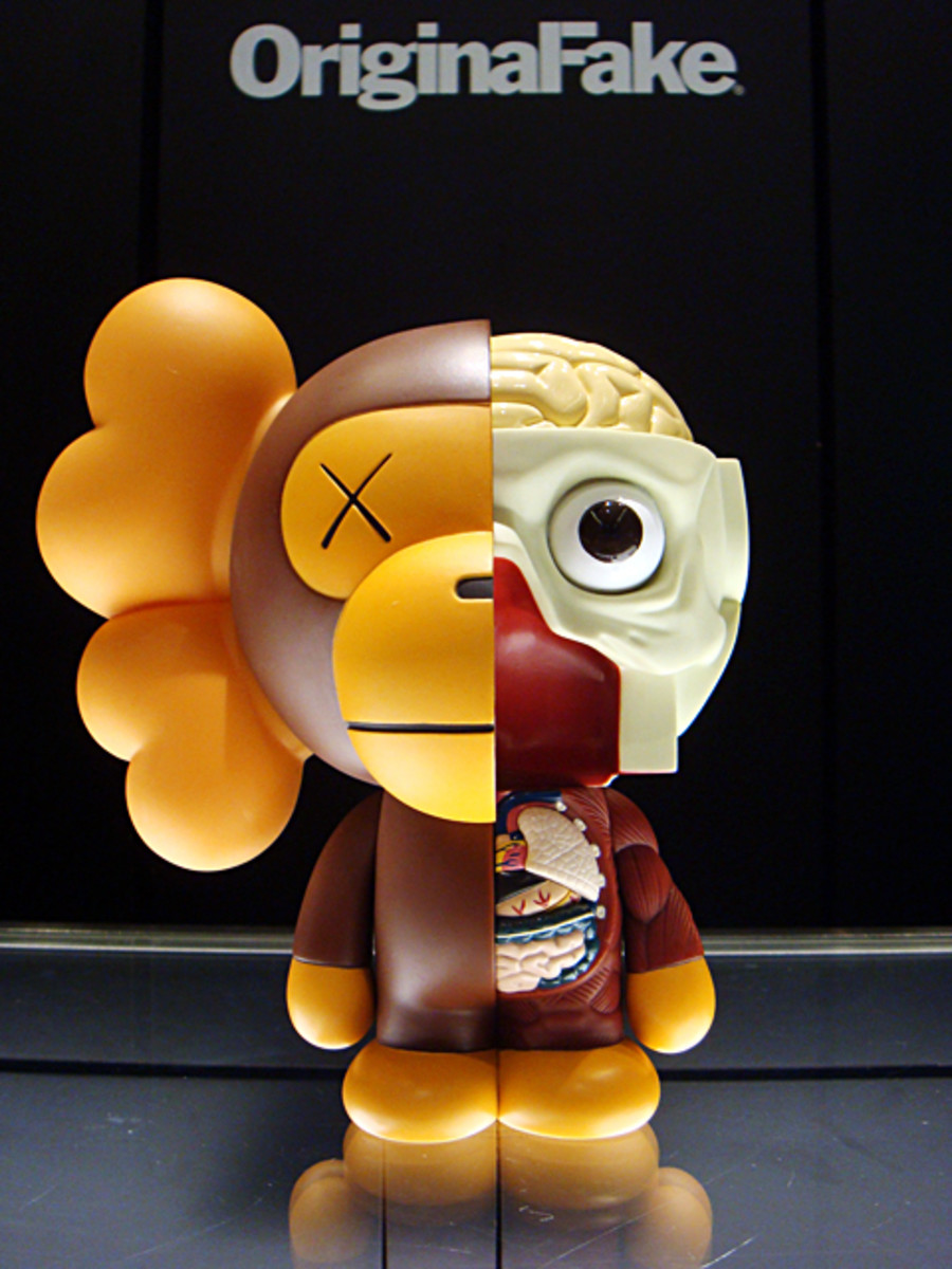 a-bathing-ape-kaws-kaws-milo-dissected companion-04