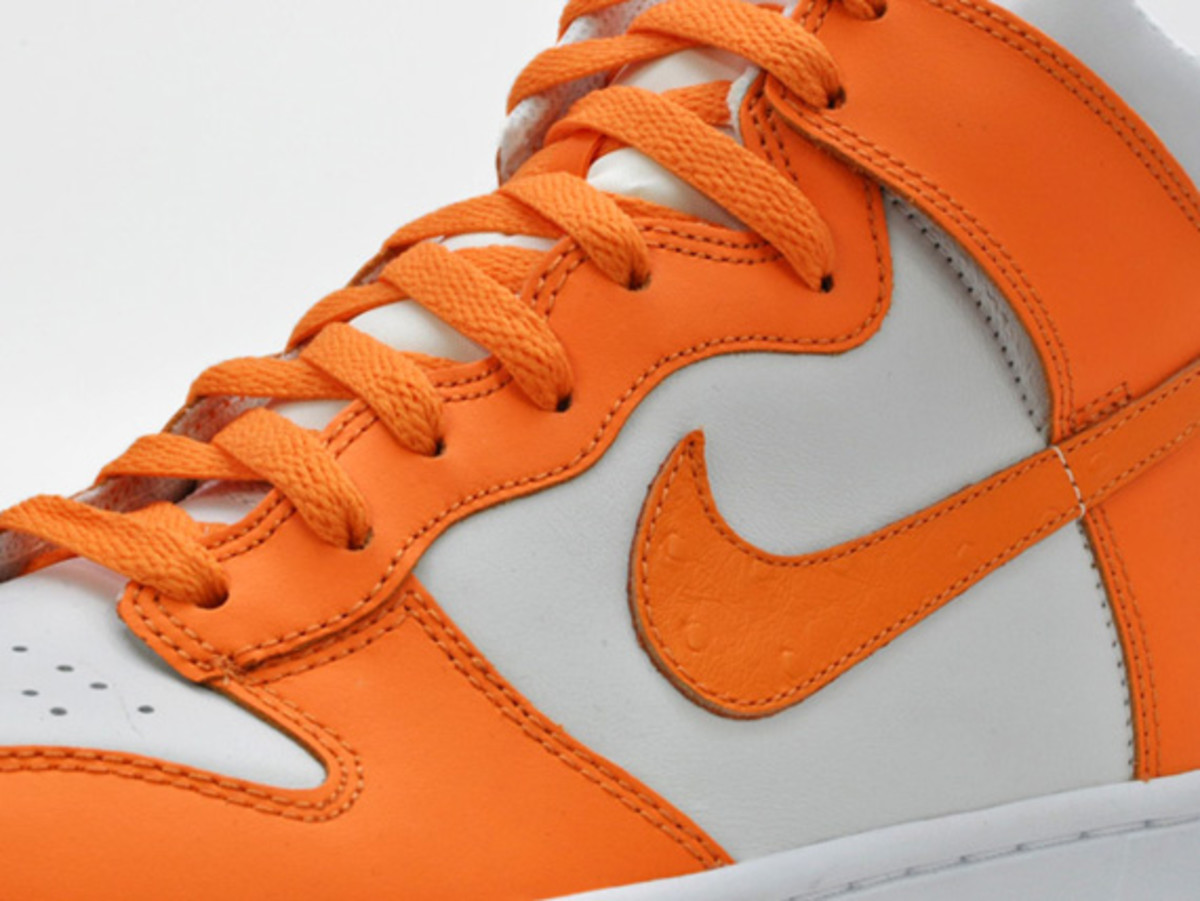 nike-dunk-high-low-ostrich-swoosh-09