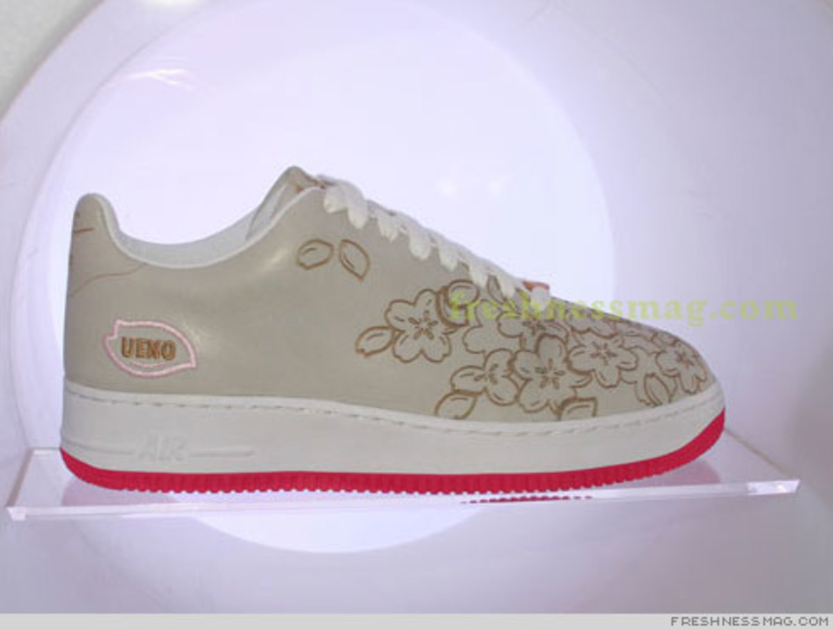Air Force 1 25th Anniversary - The Shoes!! - 9