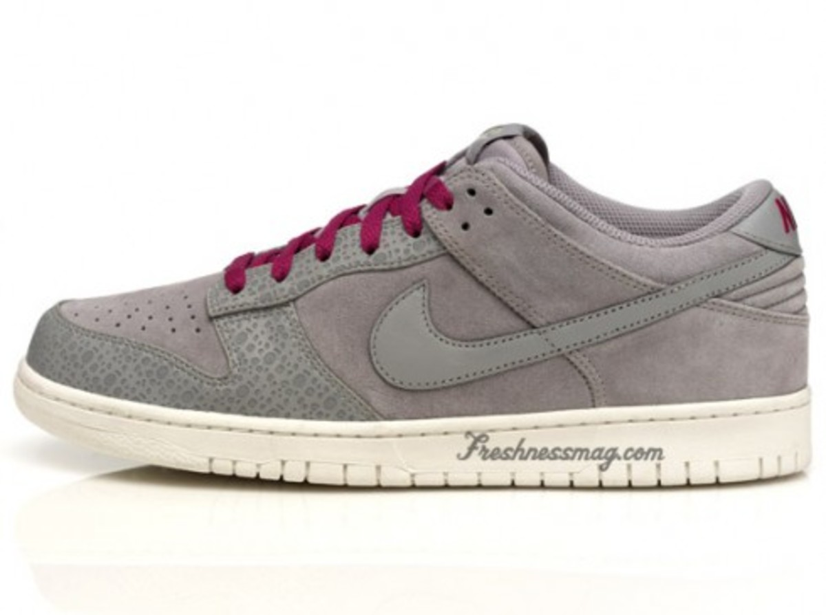 Nike Sportswear - Dunk Safari Pack - 7