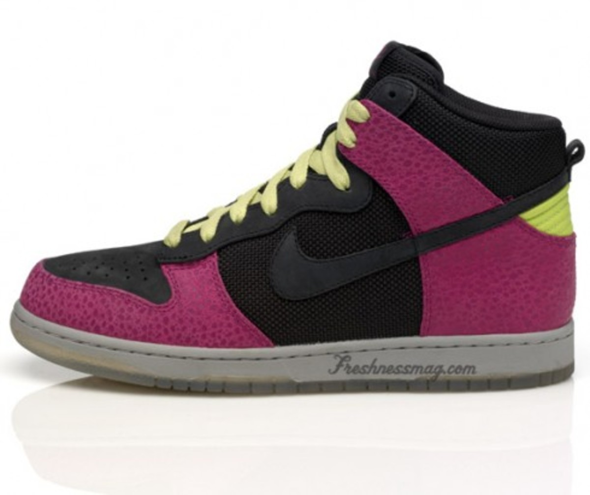 Nike Sportswear - Dunk Safari Pack - 4