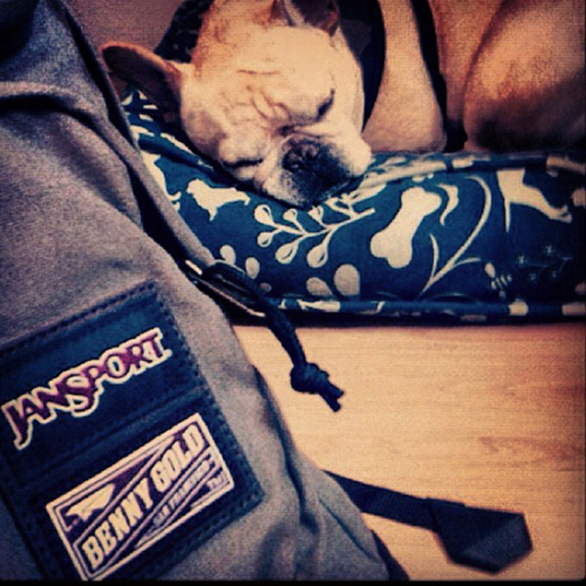 benny-gold-jansport-bag-collection-preview-02