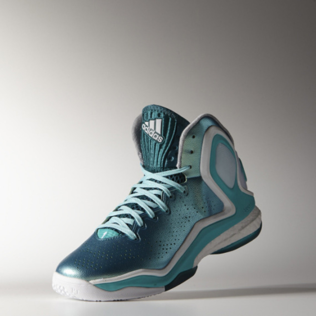 adidas-d-rose-5-boost-the-lake-06