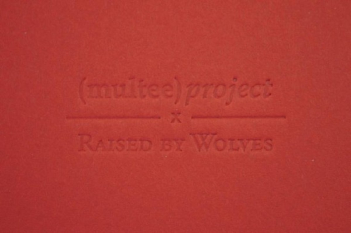 raised-by-wolves-multee-project-type-2l-carabiner-01