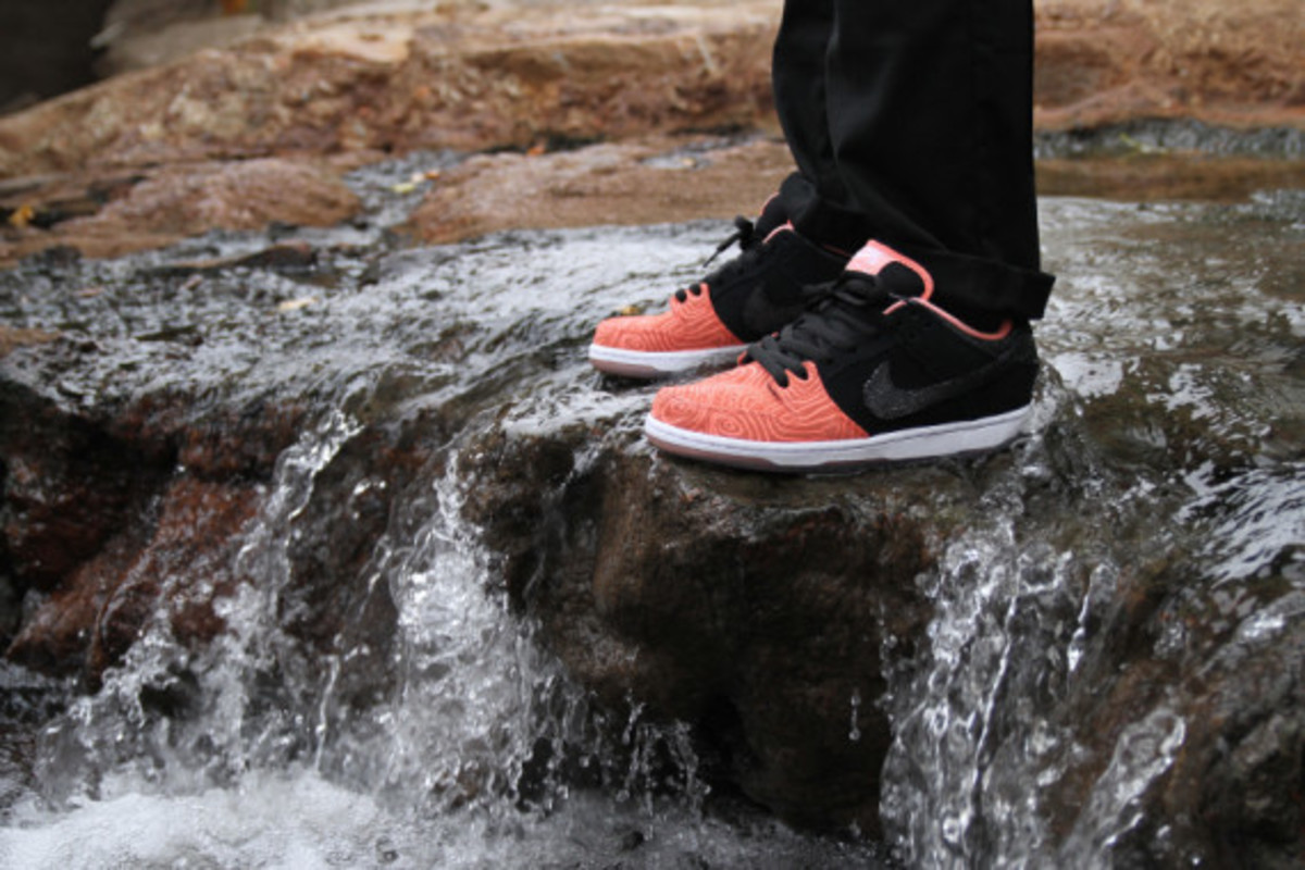 premier-nike-sb-fish-ladder-collection-04