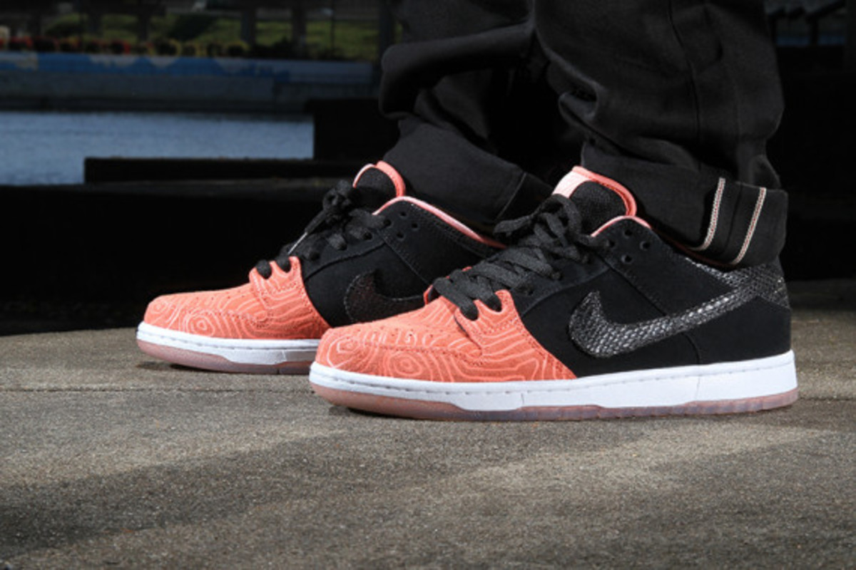 premier-nike-sb-fish-ladder-collection-02