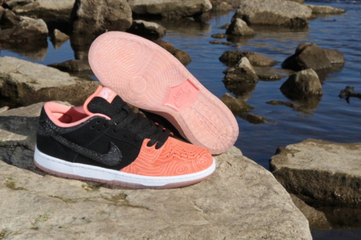 premier-nike-sb-fish-ladder-collection-08