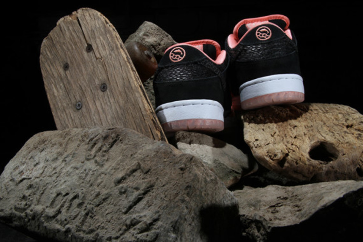premier-nike-sb-fish-ladder-collection-07