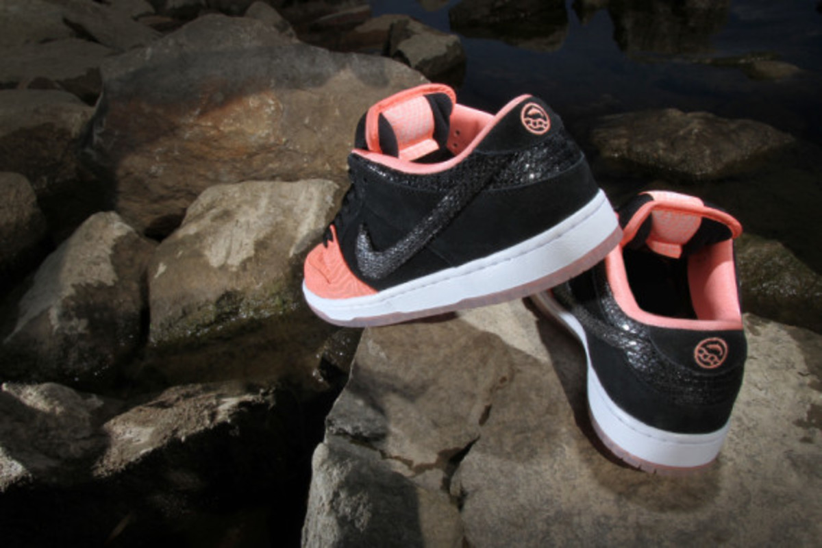 premier-nike-sb-fish-ladder-collection-06