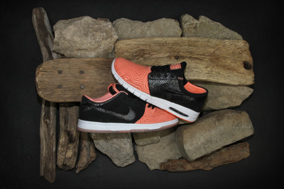 premier-nike-sb-fish-ladder-collection-10