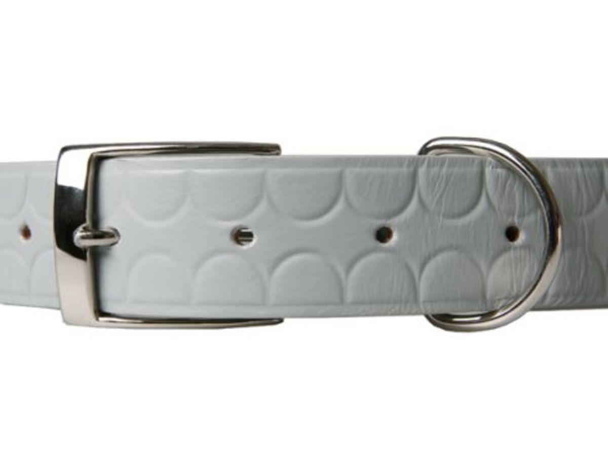 OriginalFake - Chompers Belt - Available Now - 1