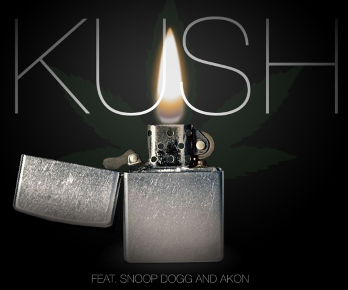 info for b8740 29562 dr-dre-featuring-snoop-dogg-akon-kush