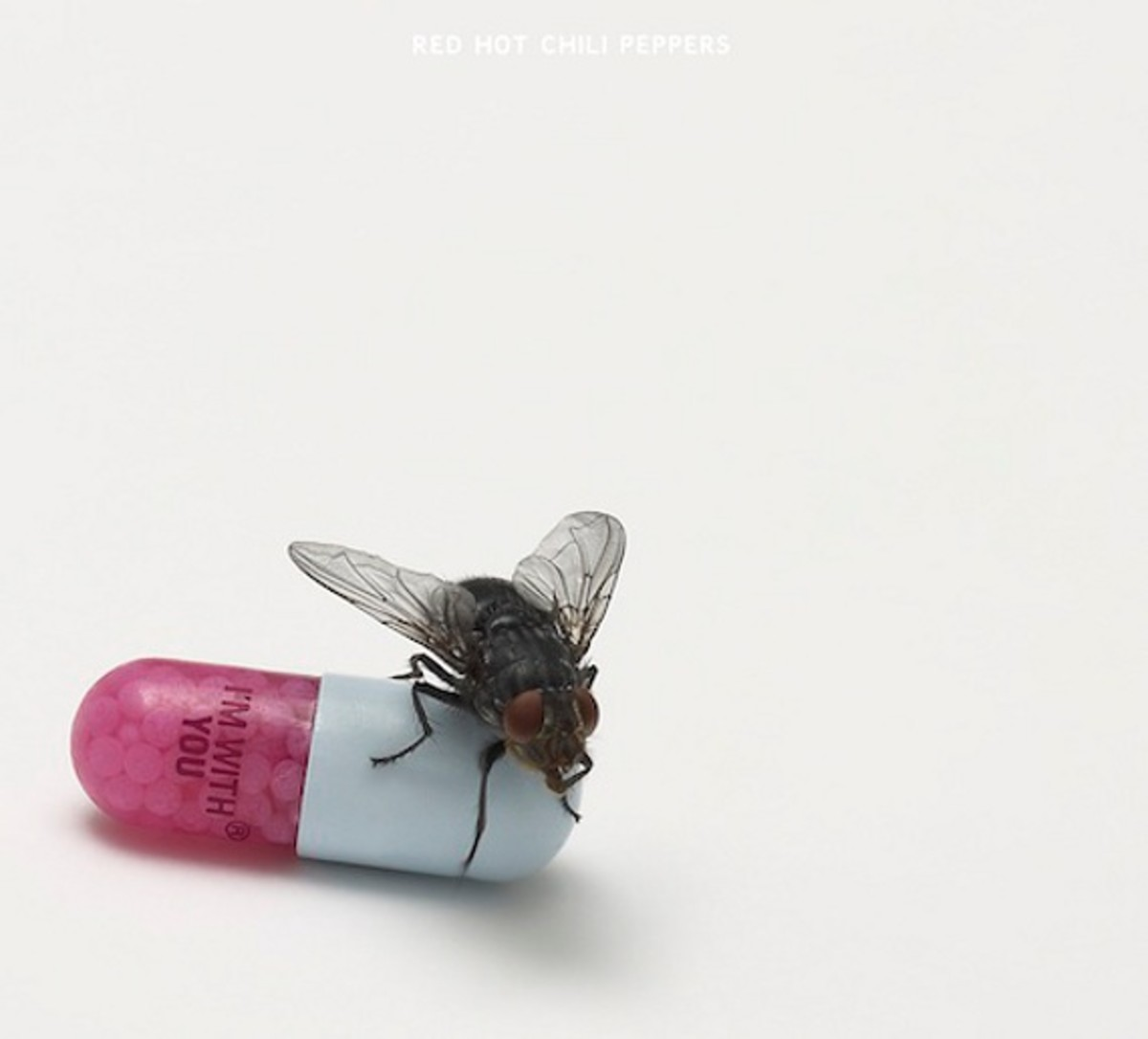 "Red Hot Chili Peppers - ""I'm With You"" Cover Art 