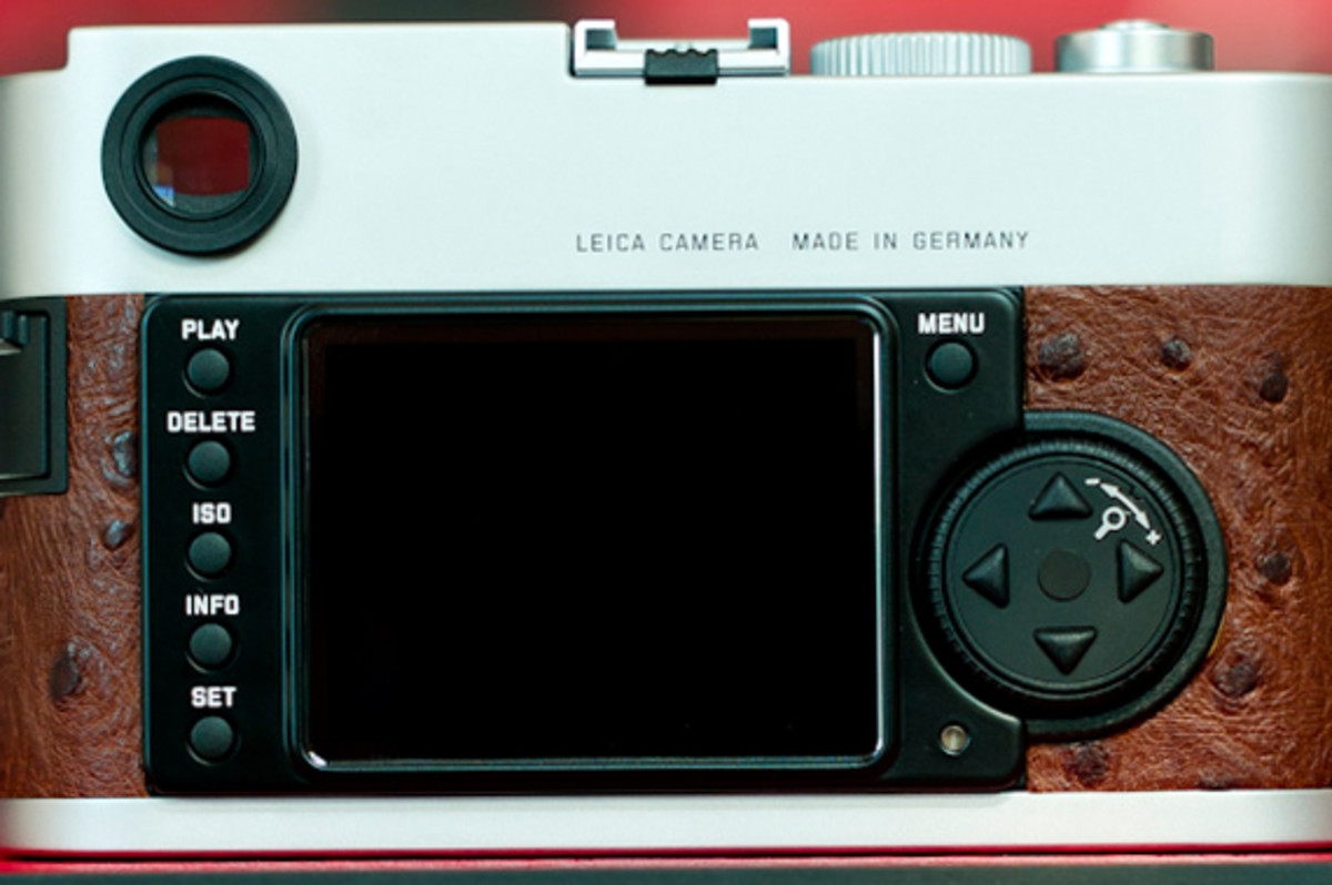 leica-m9-limited-edition-silver-ostrich-08