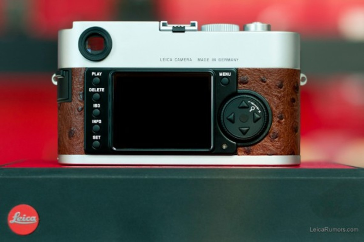 leica-m9-limited-edition-silver-ostrich-03