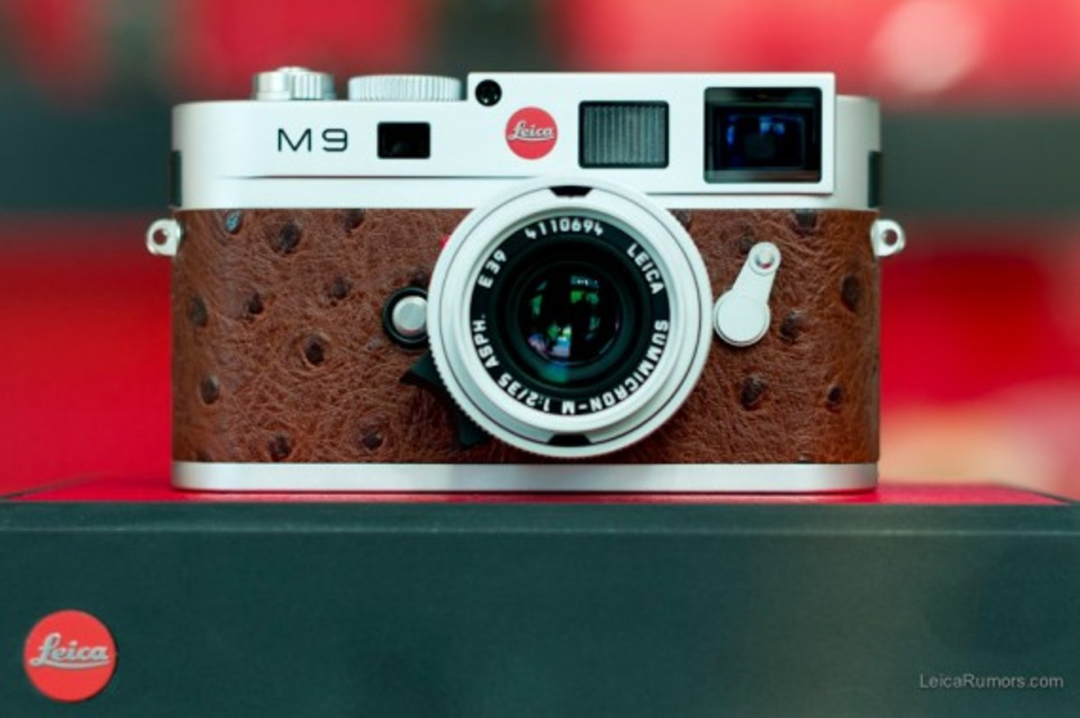 leica-m9-limited-edition-silver-ostrich-04