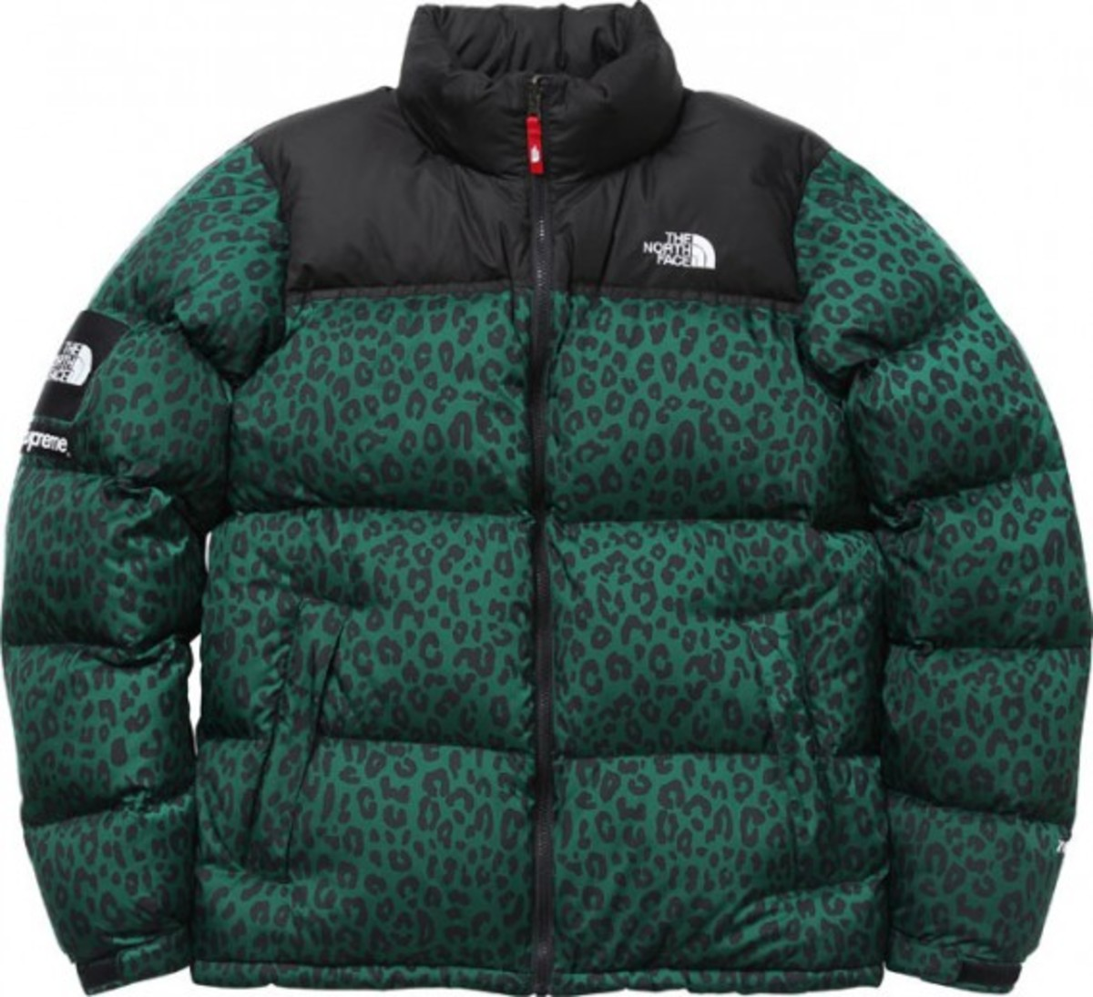 supreme-the-north-face-nuptse-down-jacket-005