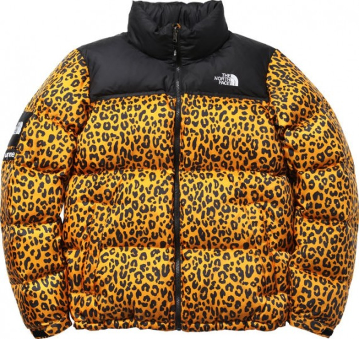supreme-the-north-face-nuptse-down-jacket-002
