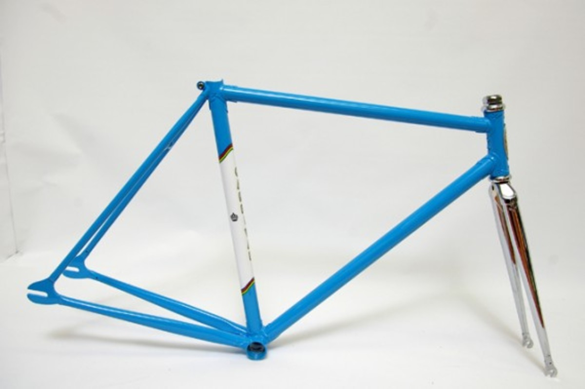Blue and White Fixed Gear Frame
