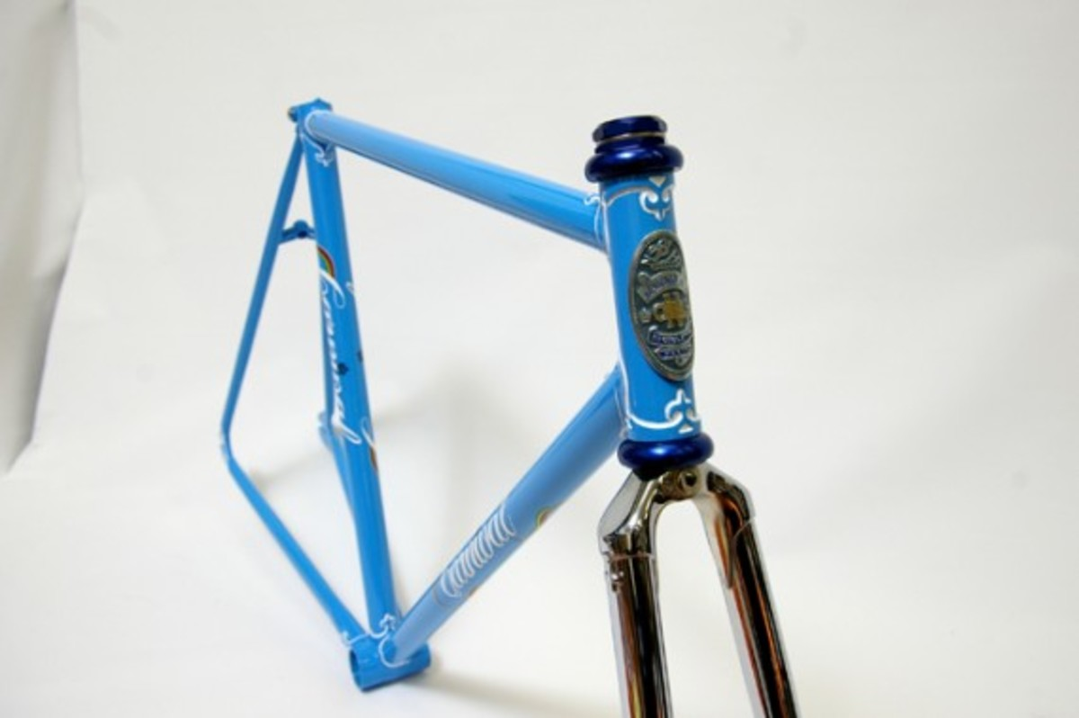 Blue Fixed Gear Frame 2
