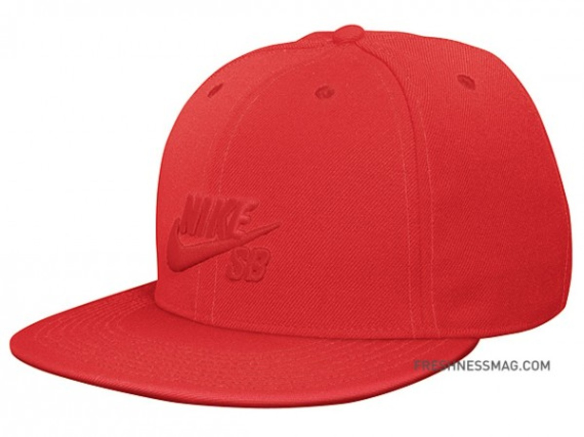 nike-sb-fitted-cap-01