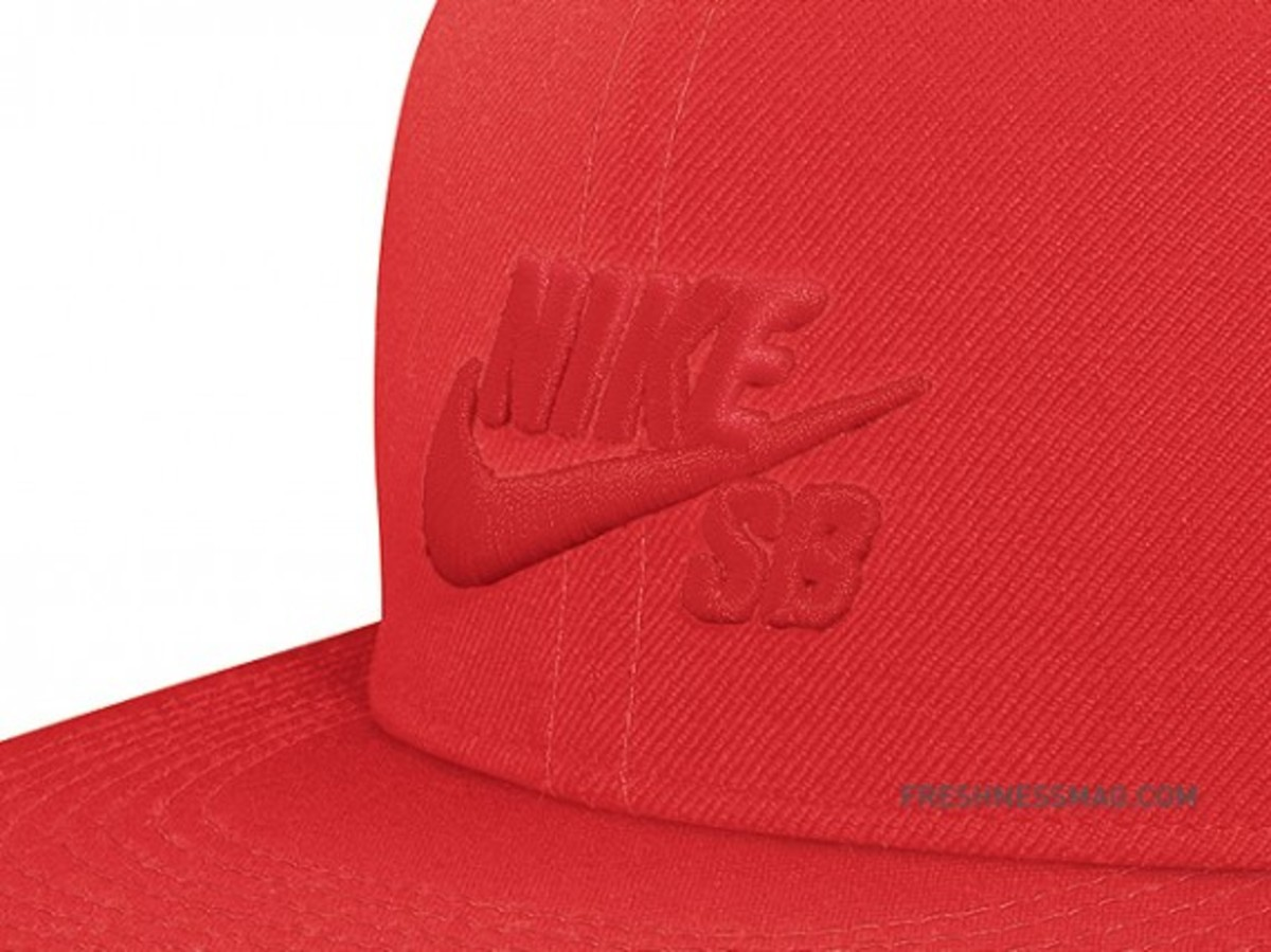 nike-sb-fitted-cap-02