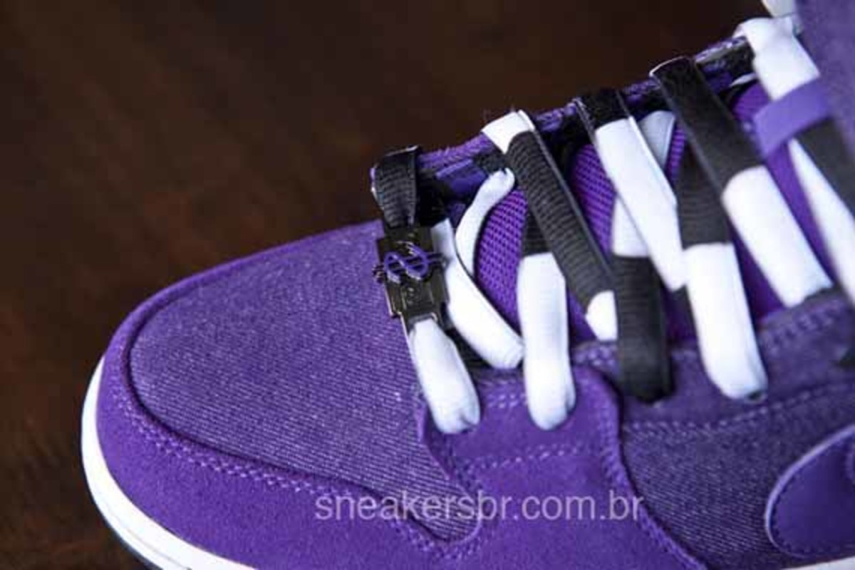 nike-sb-dirty-money-blazer-dunk-mid-5