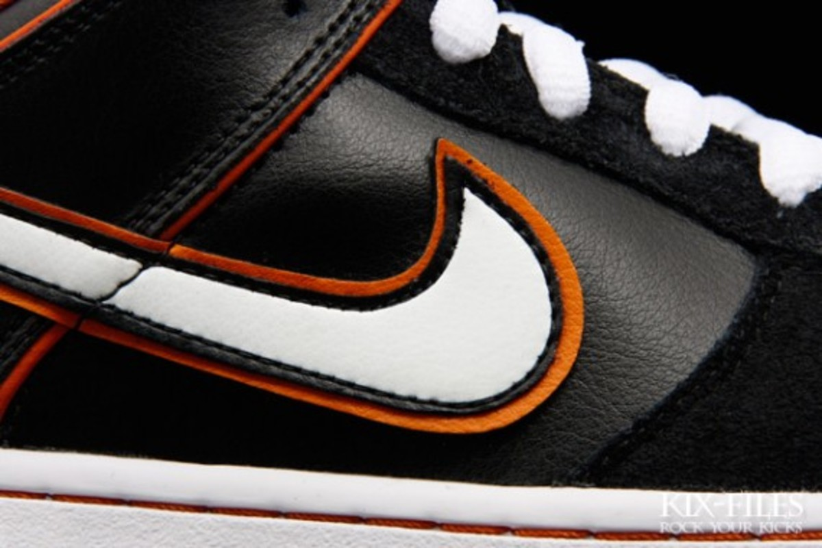 nike-sb-july-2010-new-releases-4