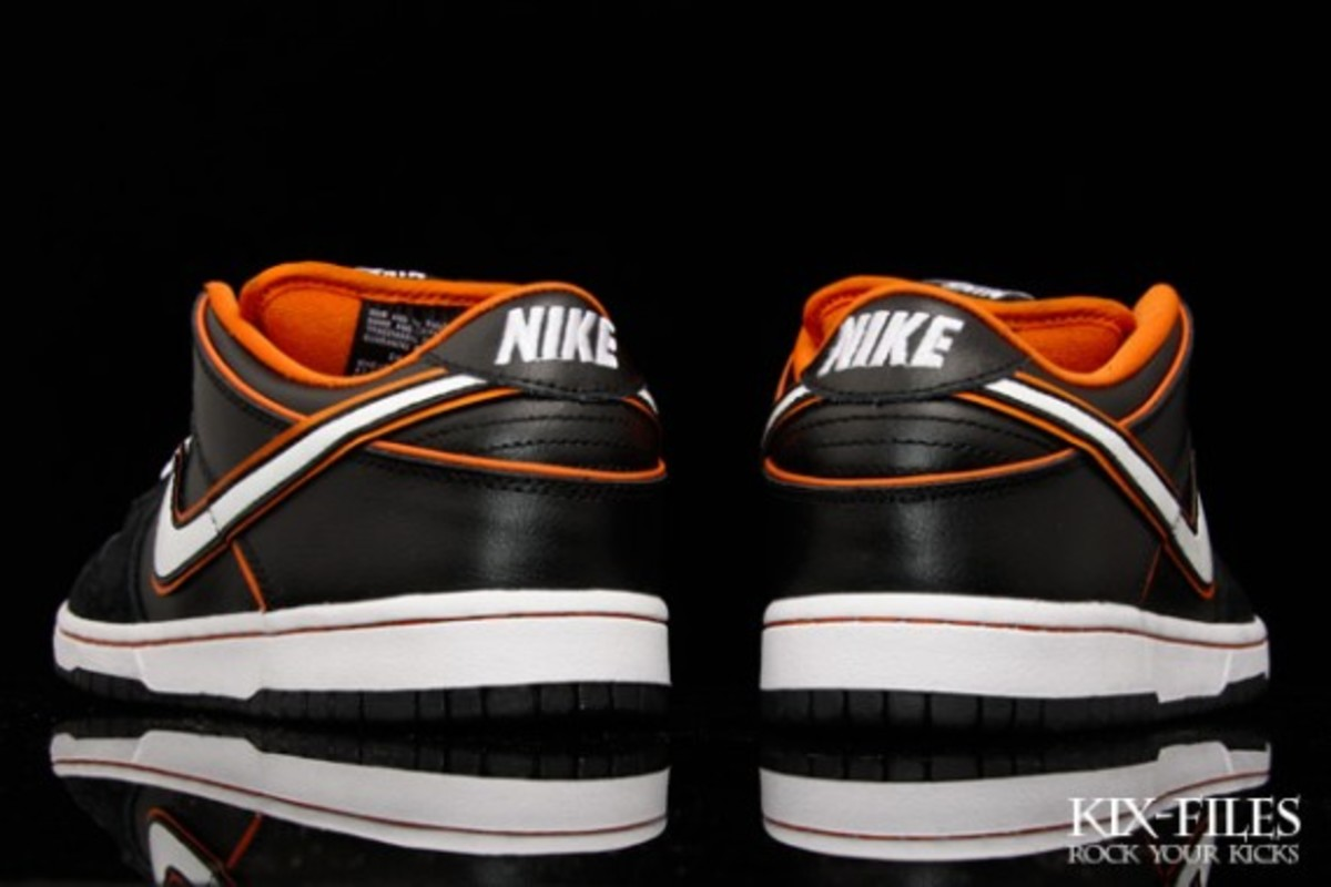 nike-sb-july-2010-new-releases-5
