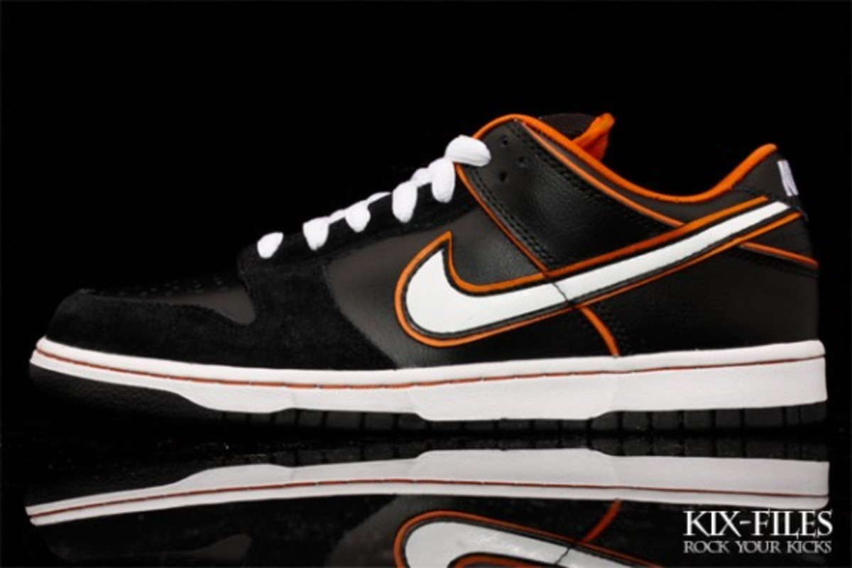 nike-sb-july-2010-new-releases-2