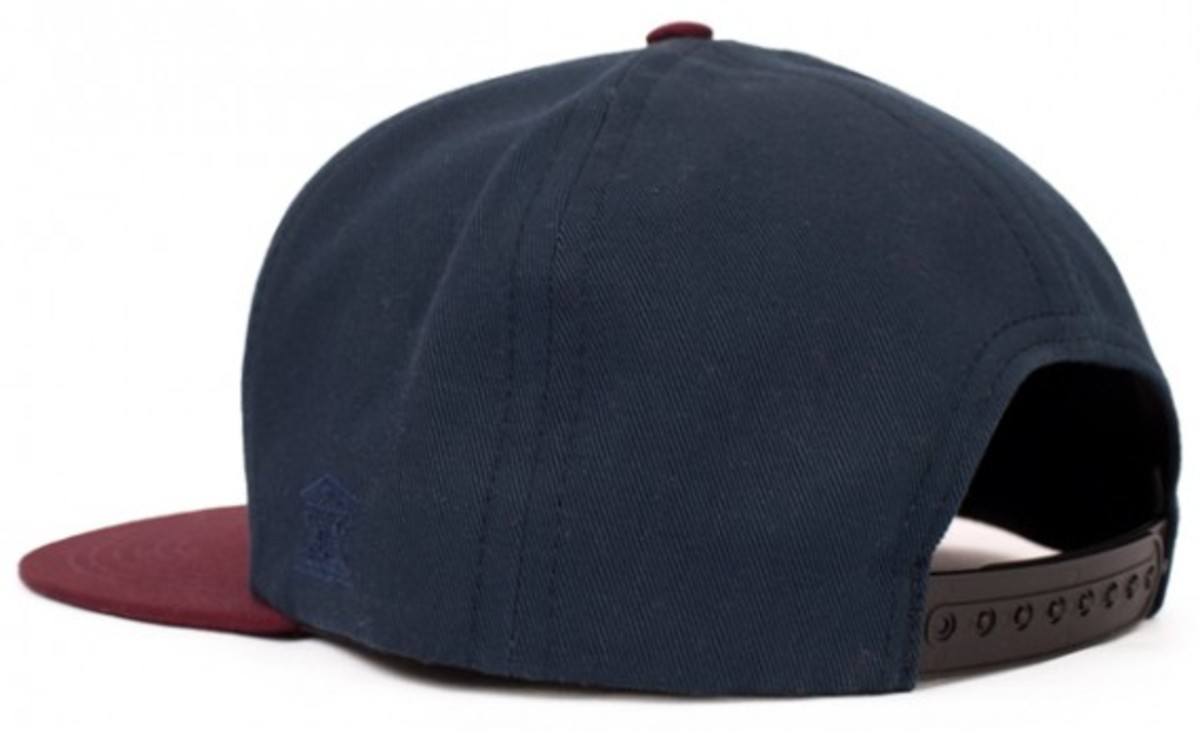 hall-of-fame-x-10-deep-triple-d-snapback-hat-2