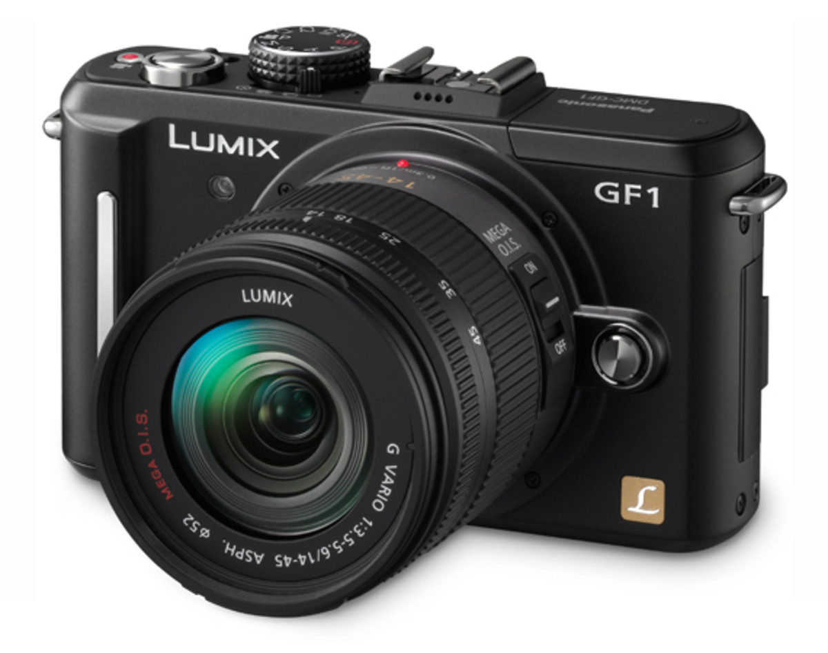 Panasonic LUMIX DMC-GF1 Black w. 14-45mm f/3.5-5.6 Lens