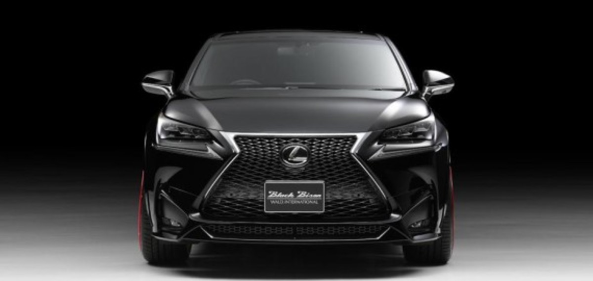 Lexus NX - Tuned by Wald International - 1